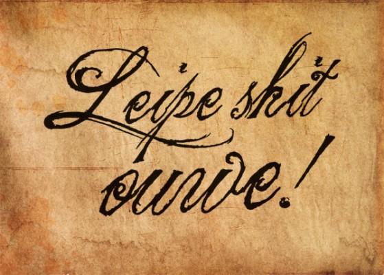 39498_leipe-shit-ouwe